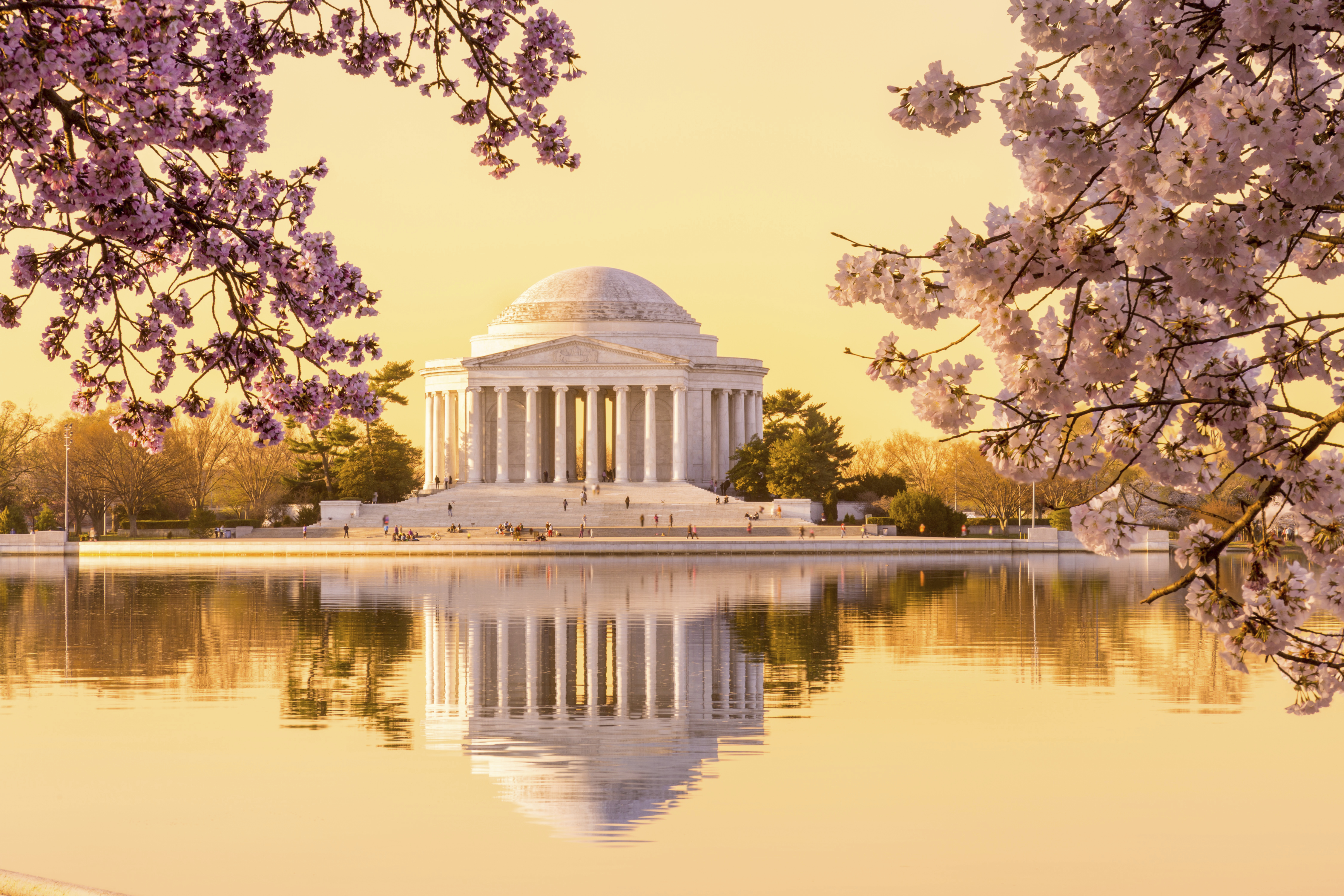 Best matchmakers in washington dc